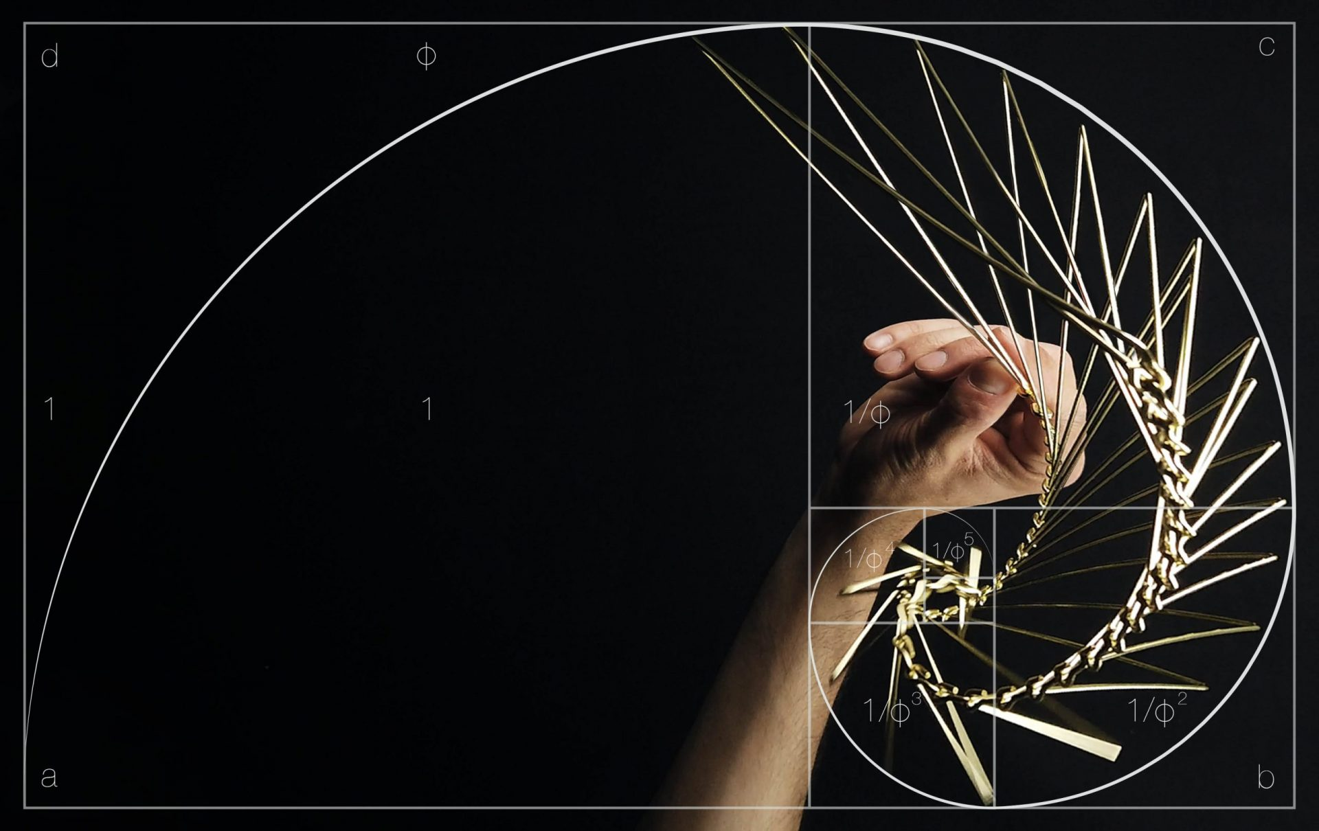 Square Wave is inspired by the golden ratio