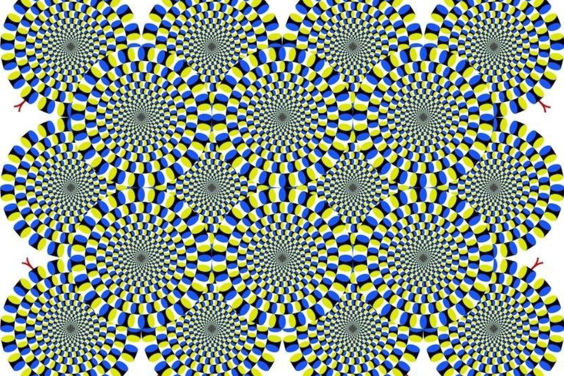 Science of Optical Illusions